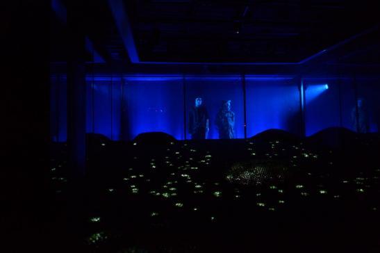 Светодиодный пол для театральных декораций изображение 5